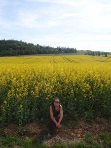 Moravia 2012