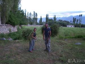 2015 Ladak. Na poli s úžasnými pomocníky z Chile, Josefínou a Kamilem. :)