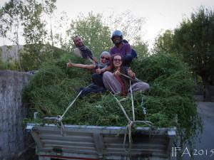 2015 Ladak. Prací ku prospěchu. :)